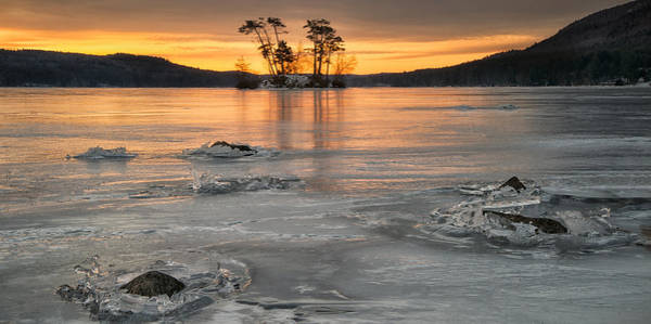 Photograph - Moose Pond Silhouette by Darylann Leonard Photography