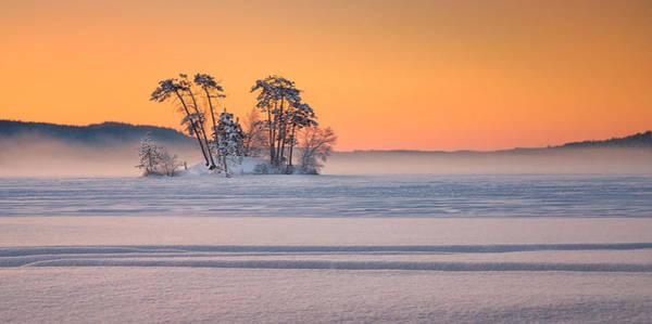 Photograph - Moose Pond Winter Sunrise by Darylann Leonard Photography