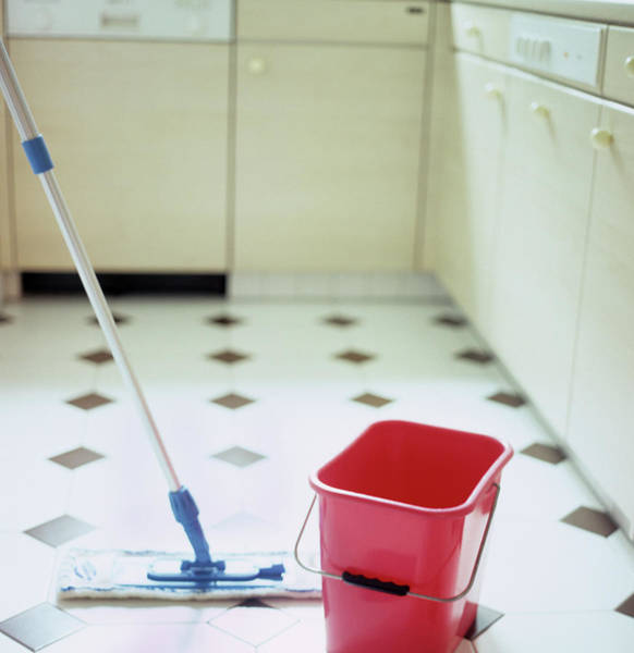 Bucket Photograph - Mop And Bucket by Cristina Pedrazzini/science Photo Library