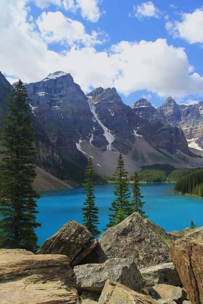 Wall Art - Photograph - Moraine Lake From The Rock Pile by Mo Barton