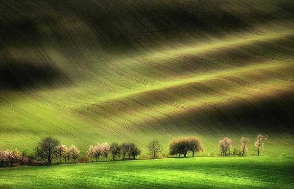 Waving Photograph - Moravian Fields by Piotr Krol (bax)