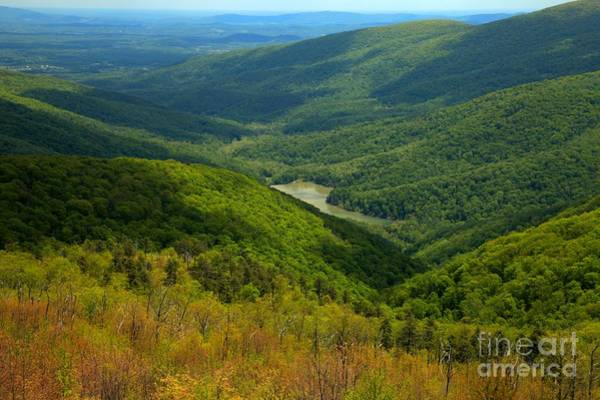Photograph - Moormans River Overlook In Spring by Adam Jewell