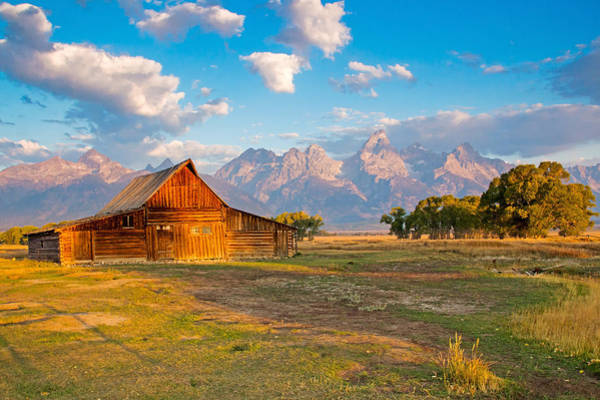 Mormon Row And The Grand Teton Art Print
