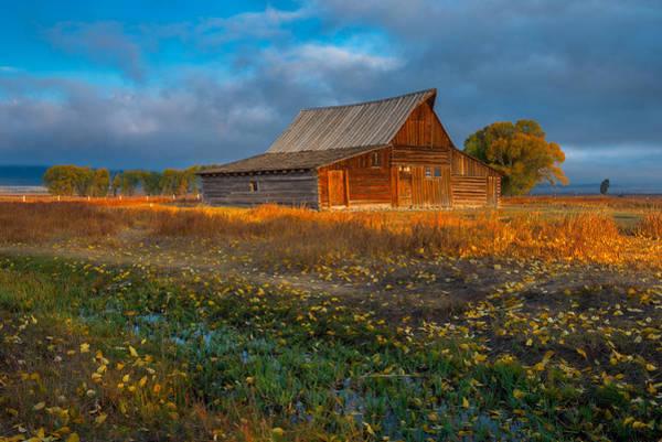Mormon Photograph - Mormon Row Autumn by Joseph Rossbach