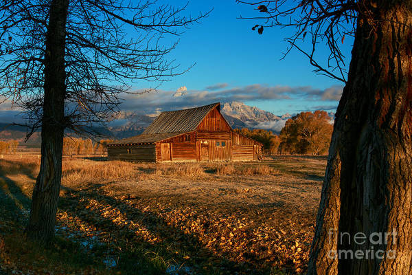 Photograph - Mormon Row Morning by Beve Brown-Clark Photography