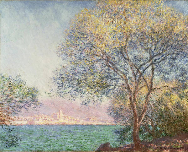 Wall Art - Painting - Morning At Antibes by Claude Monet