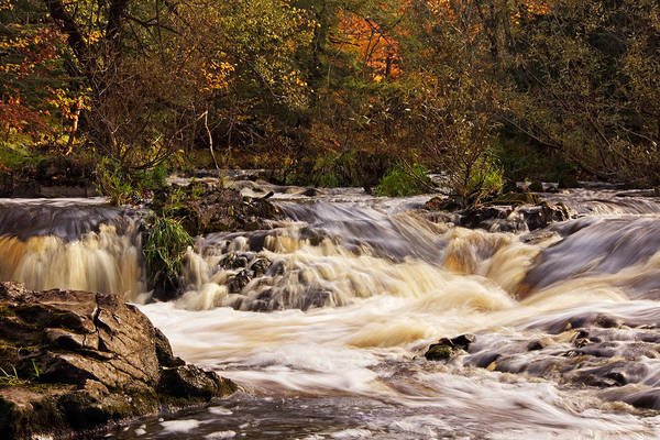 Photograph - Morning At Peterson Falls by Theo OConnor