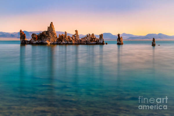 Photograph - Morning Blue by Anthony Bonafede