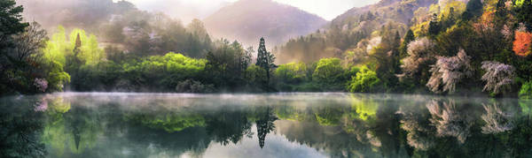 Woods Photograph - Morning Calm by Tiger Seo