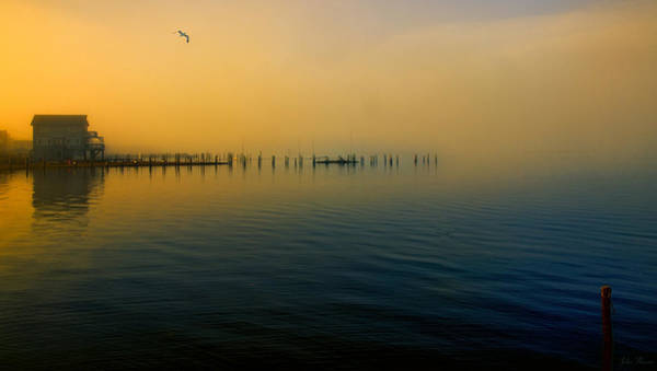 Morning Comes On The Bay Art Print