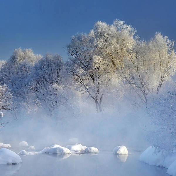 Fog Photograph - Morning Fog And Rime In Kuerbin by Hua Zhu