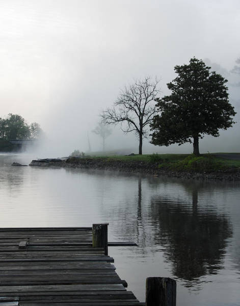 Photograph - Morning Fog by Carol Erikson