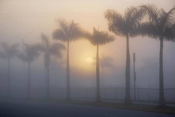 Rising Sun Photograph - Morning Fog by Mike Theiss/science Photo Library
