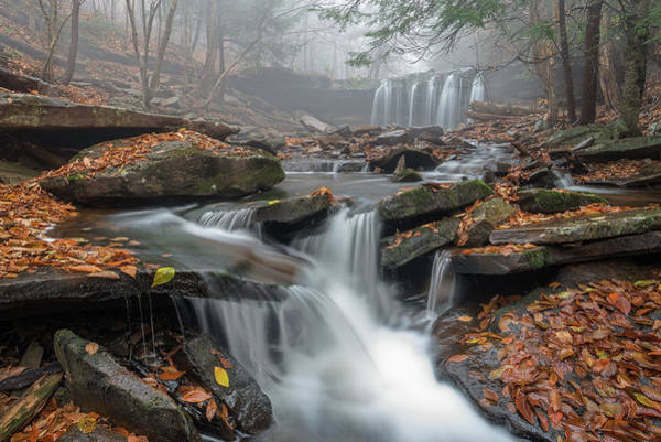 Water Fall Photograph - Morning Fog by Nick Kalathas