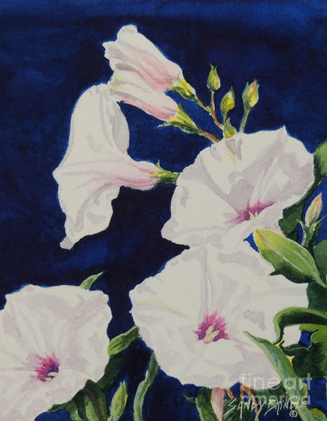 Painting - Morning Glorious...sold  by Sandy Brindle