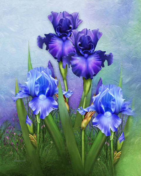 Purple Iris Mixed Media - Morning Glory by Georgiana Romanovna