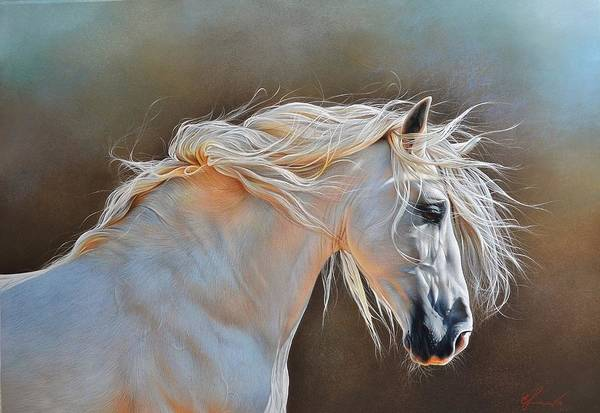 Equine Drawing - Morning Glow by Elena Kolotusha