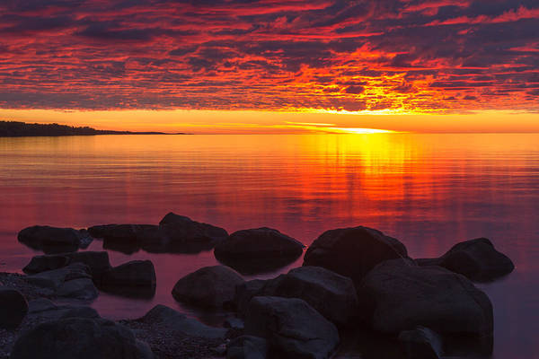Superior Photograph - Morning Glow by Mary Amerman