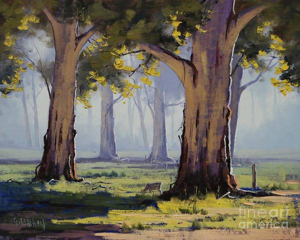 Old Tree Painting - Morning Gums by Graham Gercken