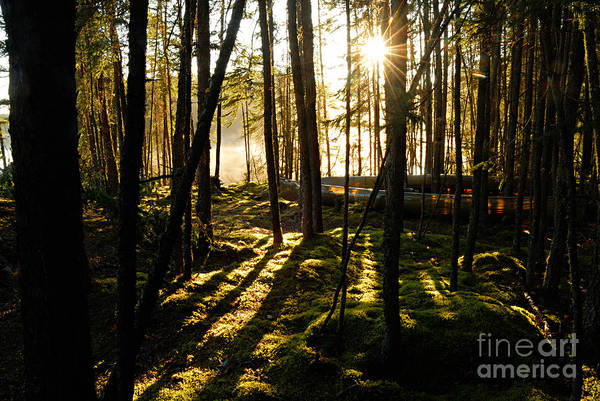 Wall Art - Photograph - Morning In Canoe Country by Larry Ricker