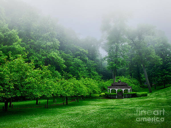 Photograph - Morning In The Park by Mark Miller