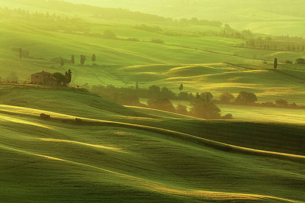 Tuscany Photograph - Morning In Tuscany by Mammuth