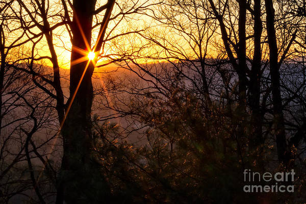 Photograph - Morning Lace by Deborah Scannell
