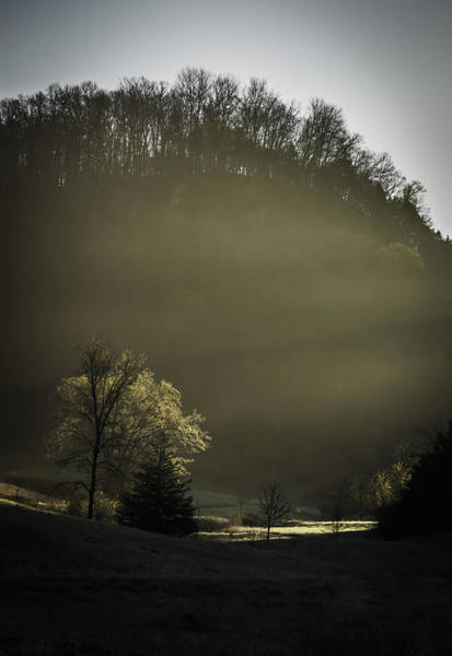 Wall Art - Photograph - Morning Light Arrives In The Valley by Thomas Young