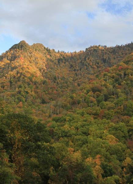 Photograph - Morning Light On Chimney Tops Smoky Mtns by Dan Sproul