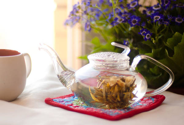 Jasmine Tea Photograph - Morning Meditation by Veronika Denega
