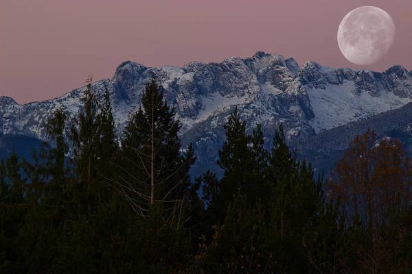 Photograph - Morning Moon by Randy Hall