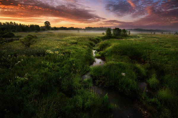 Wall Art - Photograph - Morning On Kes'ma River by Kirill Volkov
