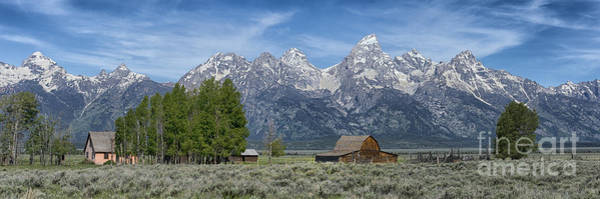 Wall Art - Photograph - Morning On  Mormon Row - Grand Teton by Sandra Bronstein
