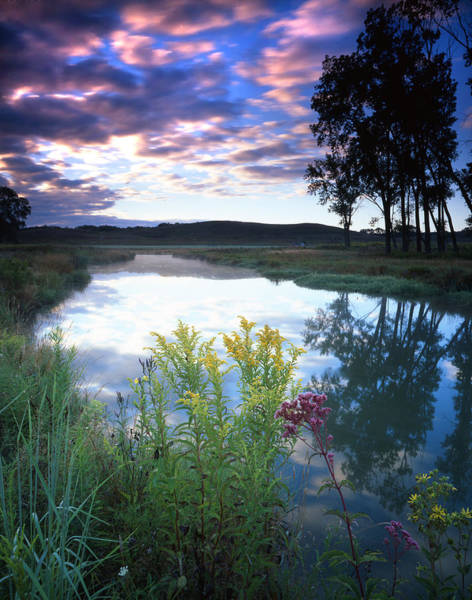 Photograph - Morning On The Creek by Ray Mathis