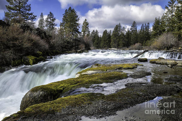 Morning On The Deschutes Art Print