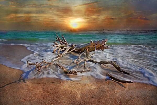 North Atlantic Photograph - Morning Paradise by Betsy Knapp