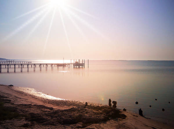 Photograph - Morning Radiance by Judy Hall-Folde