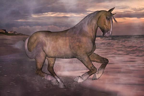 Palomino Horse Mixed Media - Morning Spirit by Betsy Knapp