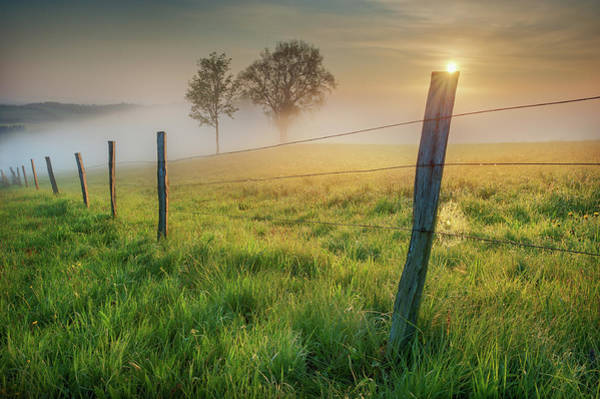 Wire Photograph - Morning Sun by Burger Jochen