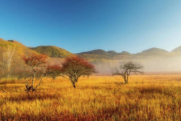 Nikko Photograph - Morning Sun Shines On Odashirogahara by I Love Photo And Apple.