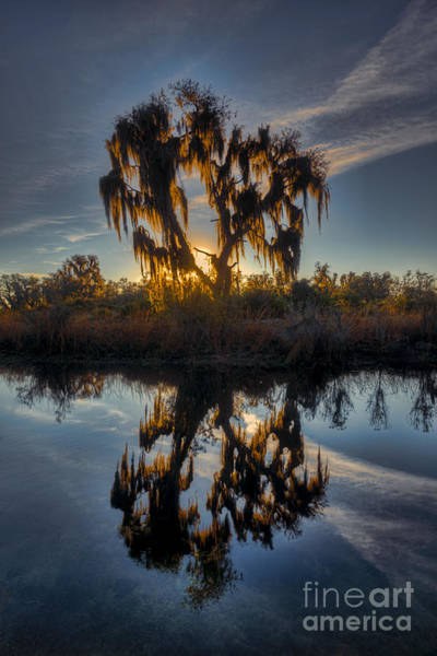 Photograph - Morning Sunrise In Florida Country by Dan Friend