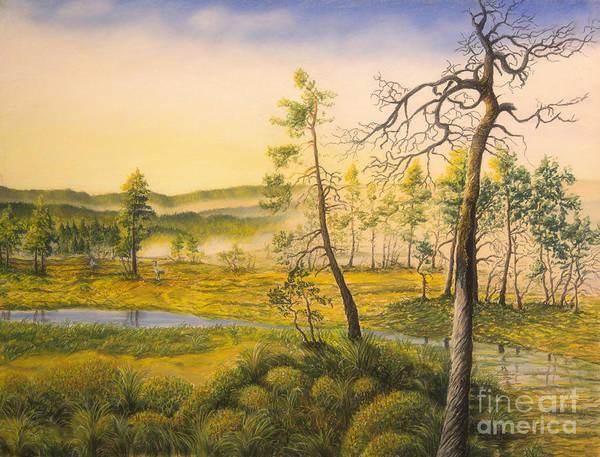 Mossy Wall Art - Pastel - Morning Swamp by Veikko Suikkanen