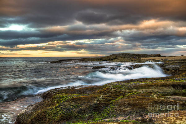 Photograph - Morning Tide by Anthony Bonafede