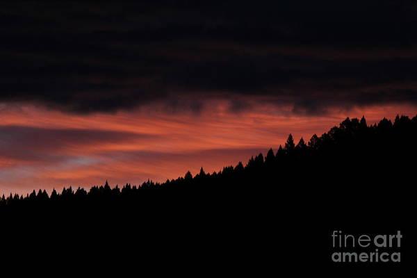 Photograph - Morning View by Ann E Robson