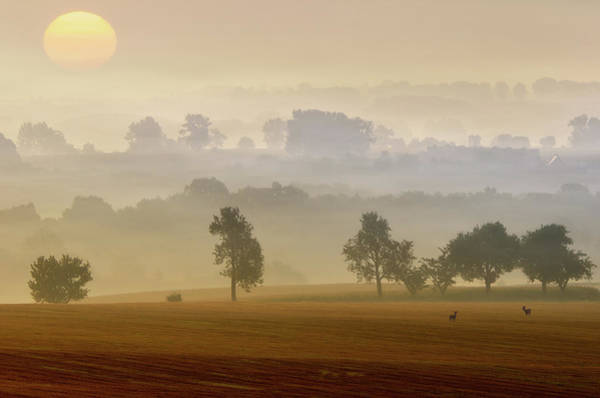 Wall Art - Photograph - Morning View by Piotr Krol (bax)