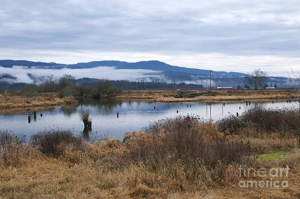 Alouette Wall Art - Photograph - Morning Walk Along The South Alloutte River by Sharon Talson