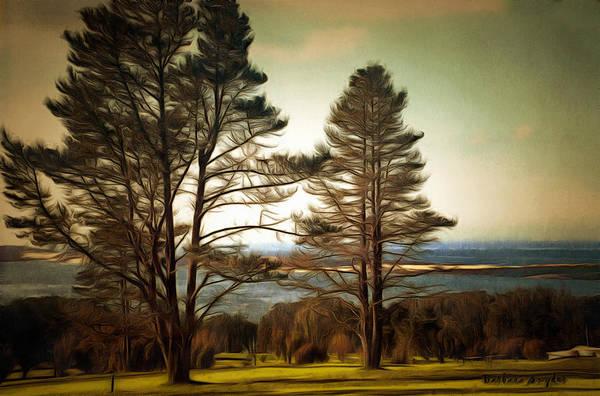 Morro Bay Painting - Morro Bay Trees by Barbara Snyder