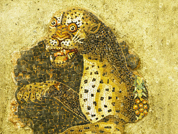 Photograph - Mosaic Of Leopard On Island Of Delos Greece by Brenda Kean