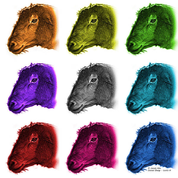 Digital Art - Mosaic Polled Dorset Sheep - 1643 M Wb by James Ahn