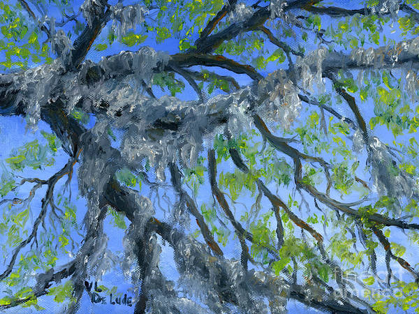 Painting - Moss Covered Oak And Blue Sky by Lenora  De Lude